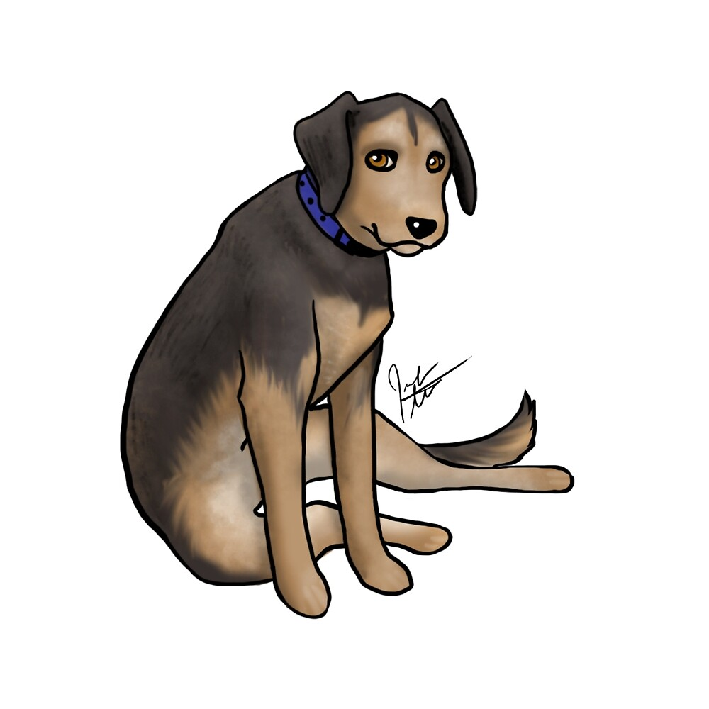 Scout the Saddest Puppy by Jennifer Stolzer