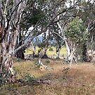 Australian Bush Art by helmutk