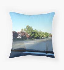 Lake Shore Drive Throw Pillow