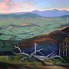Kinglake- the top of the hill by Guntis Jansons