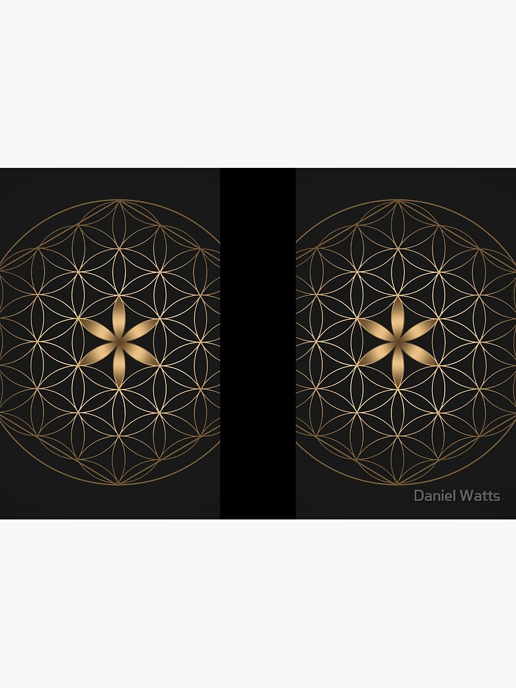 The Flower Of Life by DanJohnDesign