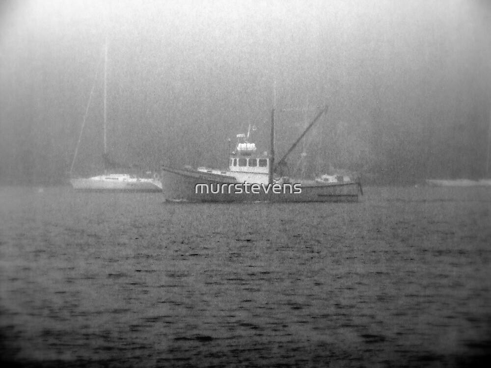 through the mist by murrstevens