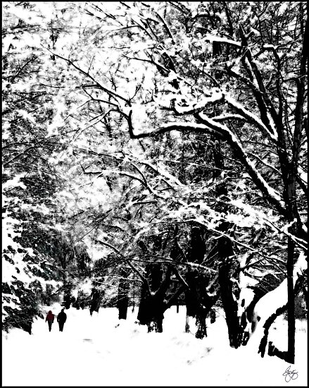 Romancing the Snow by Wayne King