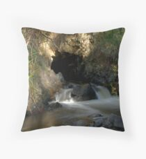 Warburton Throw Pillow