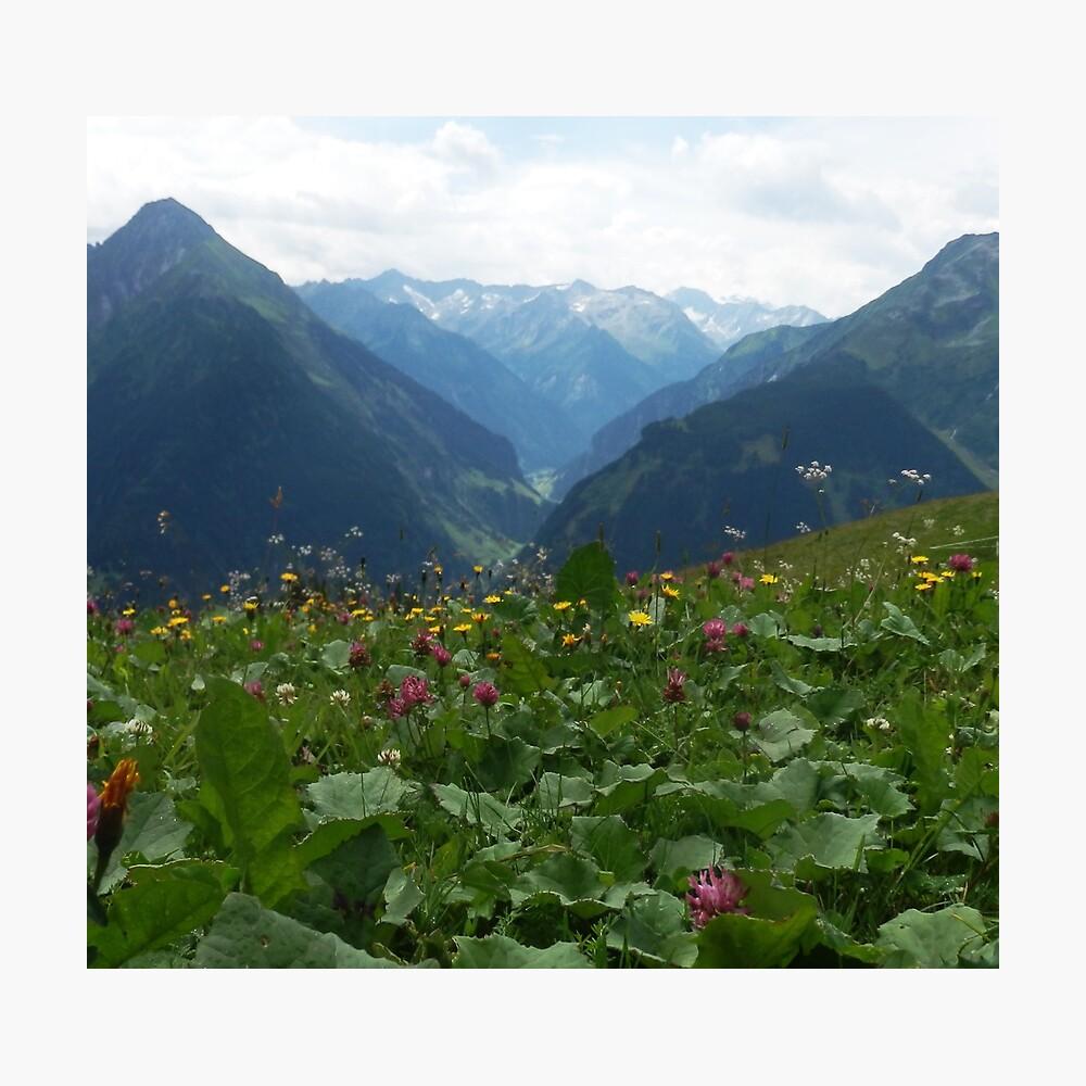 Wilde Blumen Fotodruck