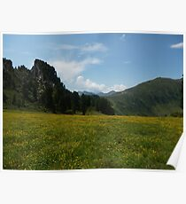 Alpine meadow Poster
