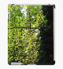 Nature's Backdrop iPad Case/Skin