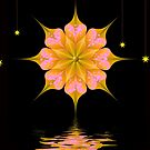 Water Lily Reflection by Chazagirl