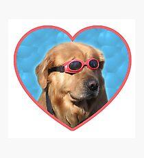 Lámina fotográfica Pegatinas Doggo: Perro Nadador