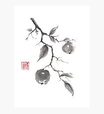Fruits of the fall sumi-e painting Photographic Print