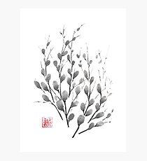 Gentle promise sumi-e painting Photographic Print