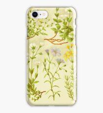 HD Vintage flowery bouquet design number 10 ~ iPhone Case/Skin