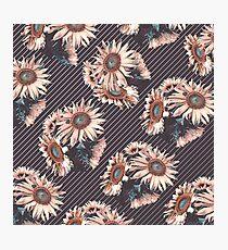 Sunflowers line Photographic Print