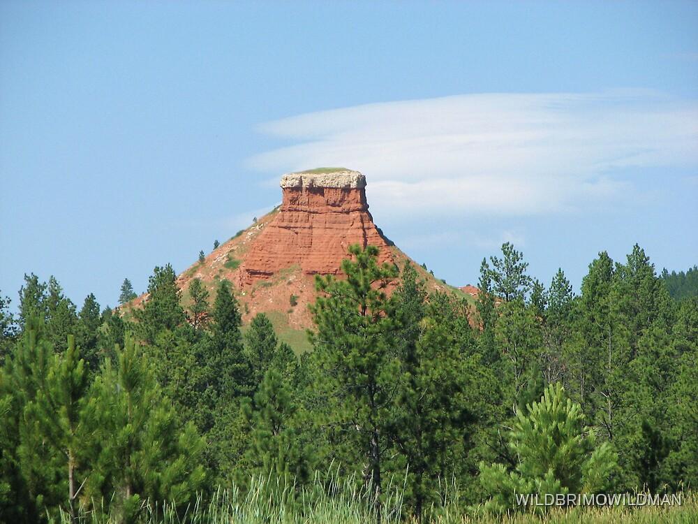 Chimney Rock by WILDBRIMOWILDMAN