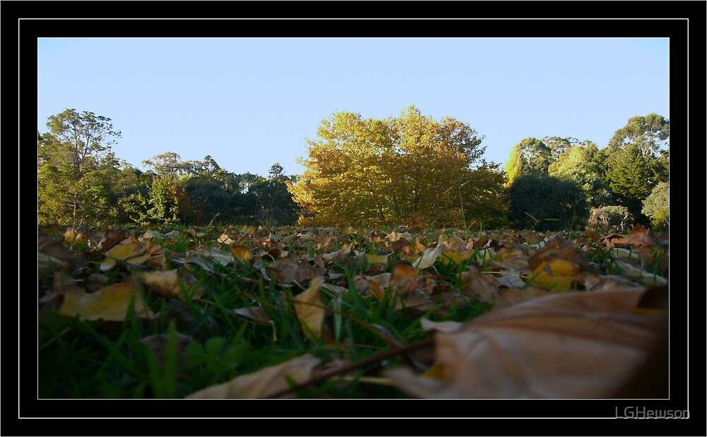 Autumn by LGHewson