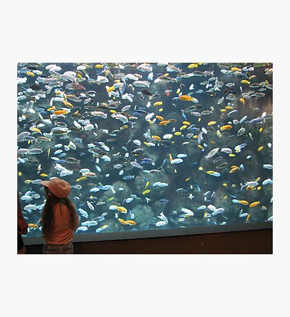 Now That's A Fish Tank!!!! Photographic Print
