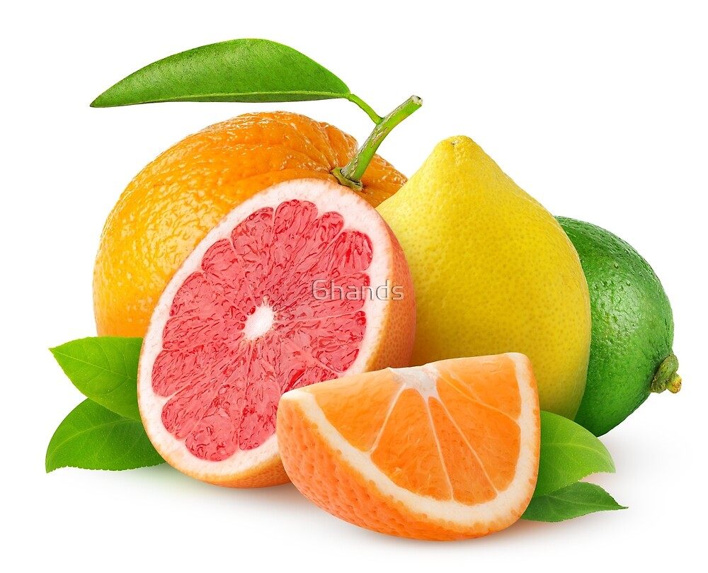 Citrus fruits by 6hands