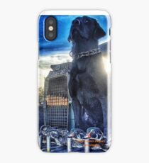 Black Lab - Mallard Down iPhone Case/Skin