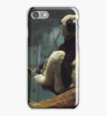 Coquerel's Sifaka iPhone Case/Skin