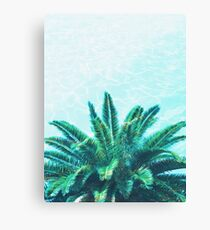 Palm Chill! Canvas Print