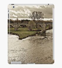 Crossing the Rhone iPad Case/Skin