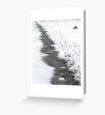 Snow on Mt Macedon Greeting Card
