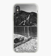 Icy Cold Lake Plan iPhone Case