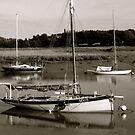 Wivenhoe Boats by newbeltane