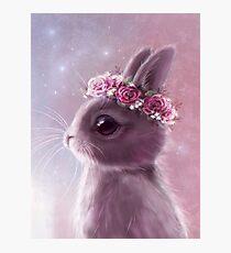 Fairy bunny Photographic Print