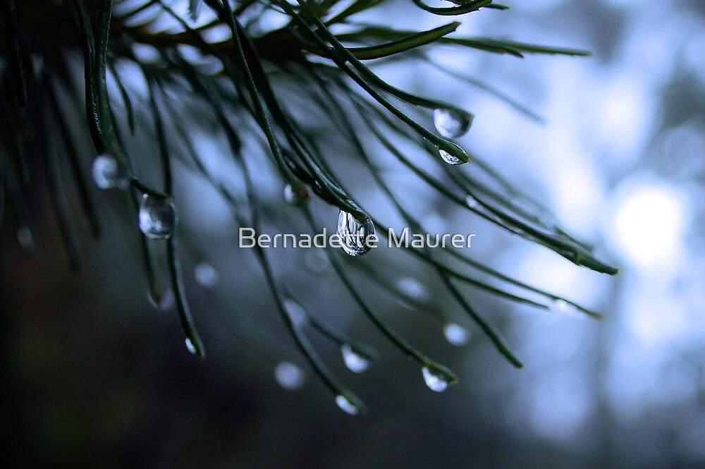 Raindrop by Bernadette Maurer