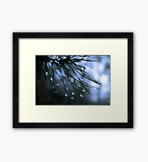 Raindrop Framed Print
