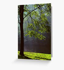 Ode to Life Greeting Card