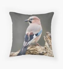 Eurasian Jay Throw Pillow