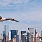 City Flight by Lawrence Henderson