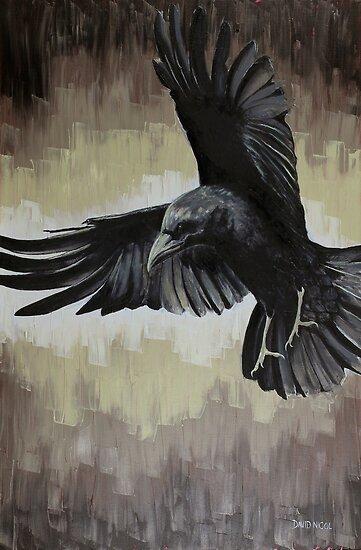 Crow #1 (Bendigeidfran) by nicold