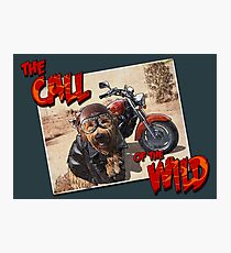 The Call of the Wild Photographic Print