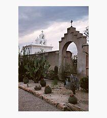 White Dove of the Desert Photographic Print