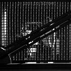 Detained by Joseph  Tillman