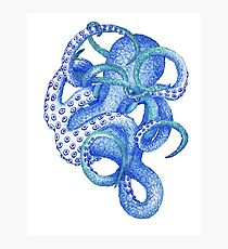 blue octopus Photographic Print