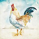 Proud Rooster by WestPhilly