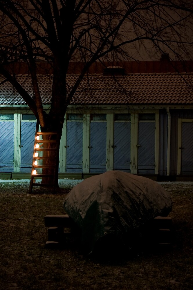 Winter lights by Kajo Laine