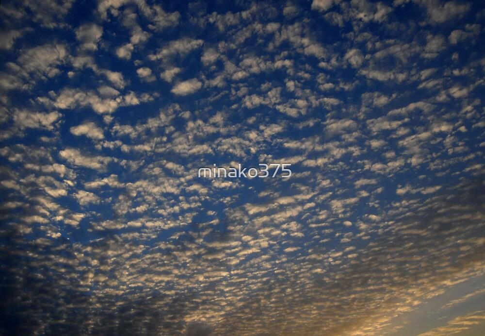 Sky by minako375