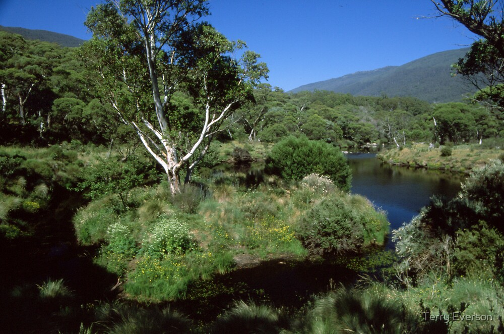 Thredbo River by Terry Everson