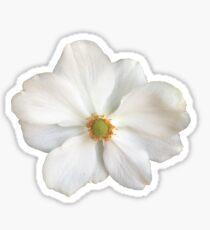 Flower 1 Sticker