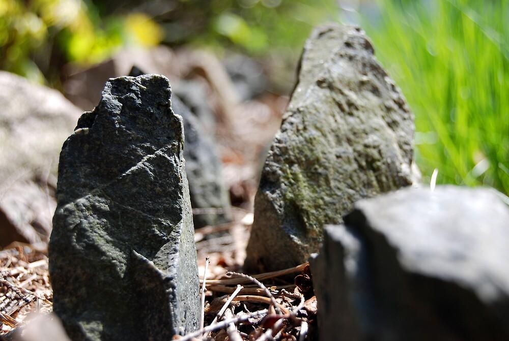 Rocks by isacreed