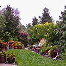 My Front Garden  by Heather Friedman