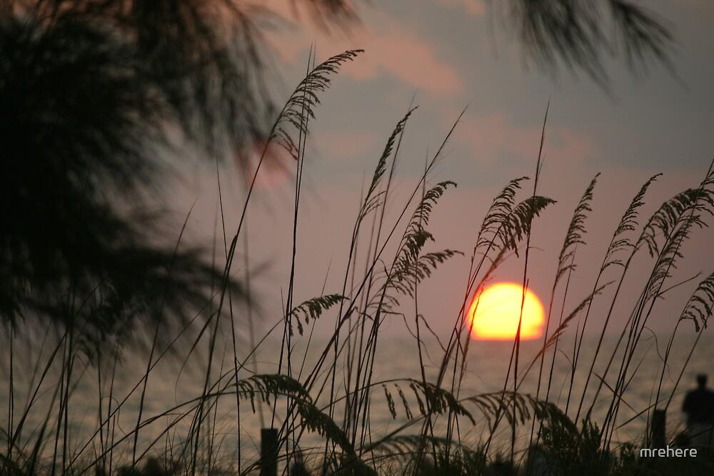 Burning Florida Sky by mrehere