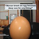 """Never trust an egg because they can be anything"" by Daniel  Cohen"
