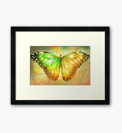 "Butterfly 4 (from ""Butterflies"" collection) Framed Print"