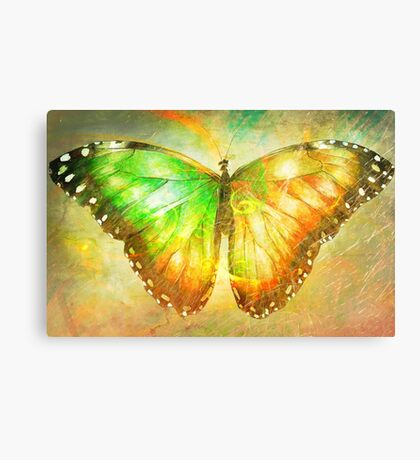"Butterfly 4 (from ""Butterflies"" collection) Canvas Print"